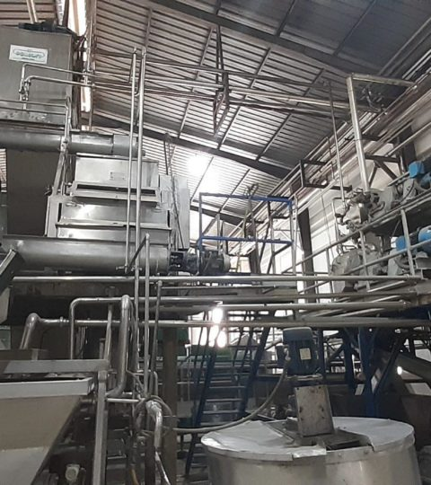 Fruit Pulp Production Line, 8T/hr ( Peaches, Apricots, Plums…)